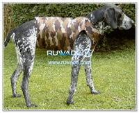 Colete de cão do neopreno camo -003